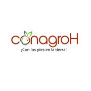 Consorcio Agrocomercial de Honduras - CONAGRO