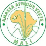 AMASSA AFRIQUE VERTE