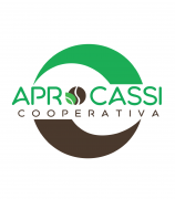 Cooperativa de Servicios Multiples Aprocassi