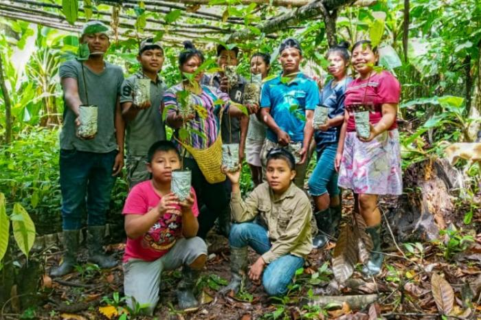 Young cocoa entrepreneurship stands up to extensive livestock farming in Panama