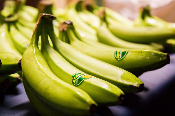 Exportation de la banane biologique sénégalaise en Belgique