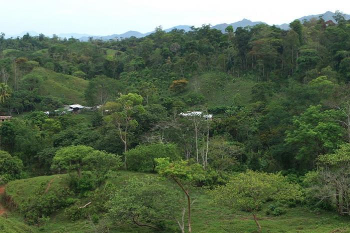 Vacante: Asistente Administrativo Contable / Honduras