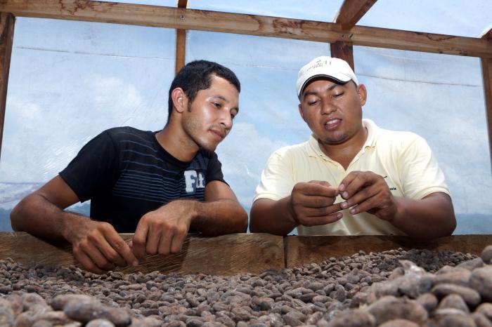 Vacante: Especialista Regional – Subsector Cacao
