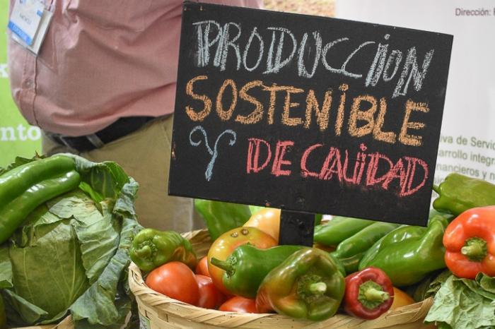 Latinoamérica: Negocios inclusivos clave para abastecer al mercado mundial