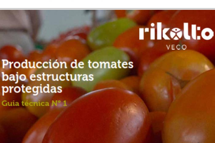 Guía Técnica: Producción de tomates bajo estructuras protegidas