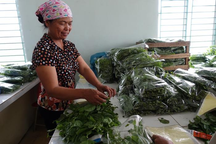 Vietnamese supermarkt in zee met Tu Xa coöperatie voor veilige groenten