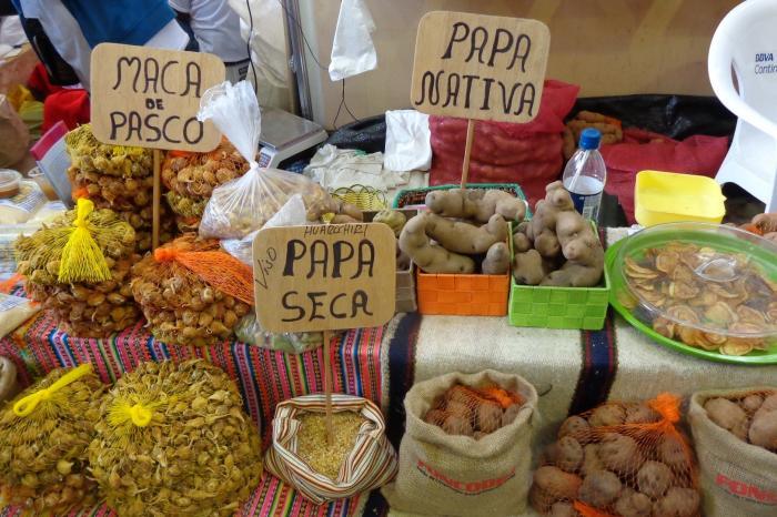 The RUAF Foundation y VECO Andino publican estudio sobre rol del sector privado en sistema alimentario de Quito.