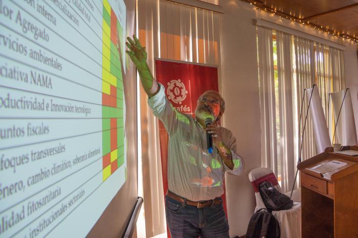 TDR - Elaboración de estrategia de incidencia para Nicafés