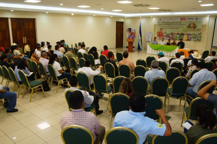 Sigue fortalecida la CANICACAO, principal gremio cacaotero nicaragüense