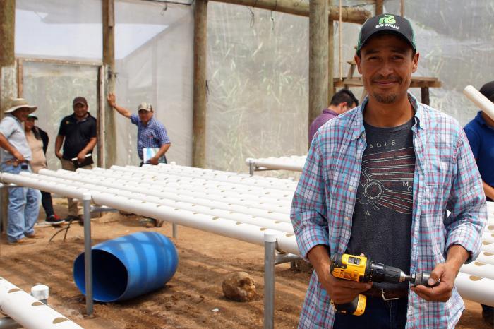 Hidroponía al rescate de los productores en Honduras
