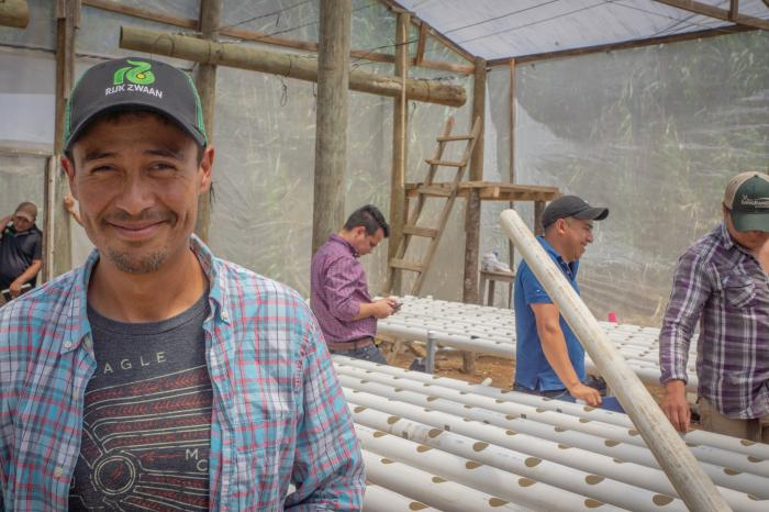Hydroponics in Honduras: less risk, more food safety