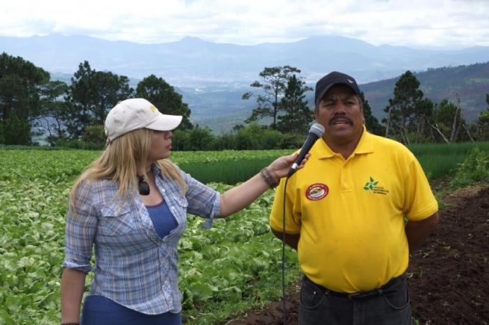 Programa televisivo: vegetales sanos para Tegucigalpa.