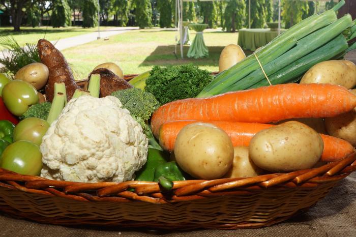 Consultoría: Investigación de mercado nacional para vegetales sanos y frescos