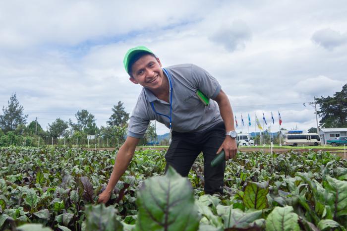 Productores hortícolas con más posicionamiento e incidencia en el sector público