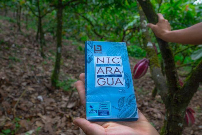 Chocolate sostenible de Nicaragua ya en supermercados de Bélgica