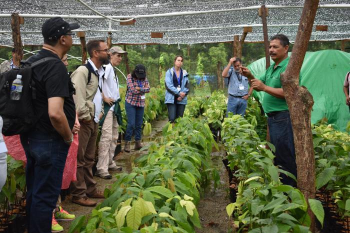 Memoria Viaje de Aprendizaje Fincas Cacaoteras del Futuro, Honduras 2017