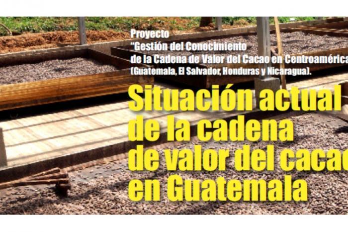Análisis de la Cadena de Valor del Cacao en Guatemala