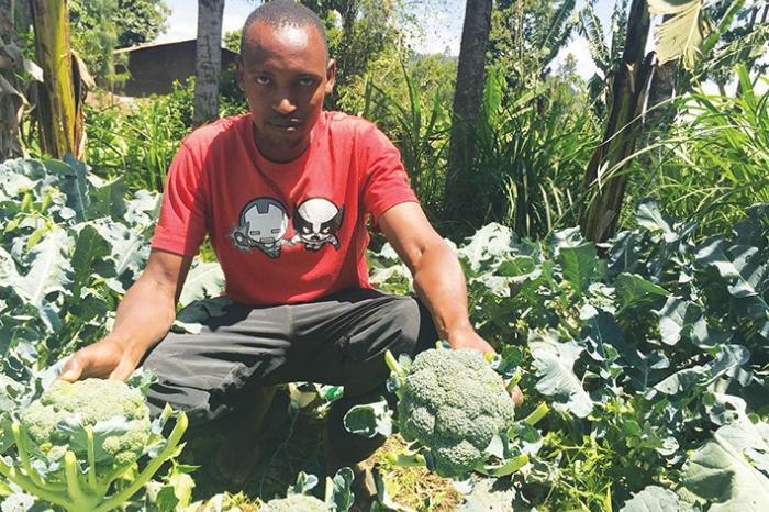 Belajar dari Sayur dan Buah