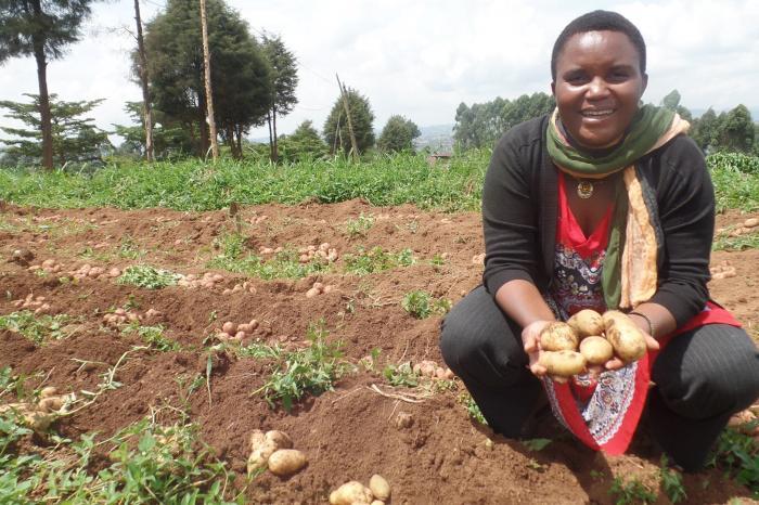 Lydie Masika: koningin van de aardappel