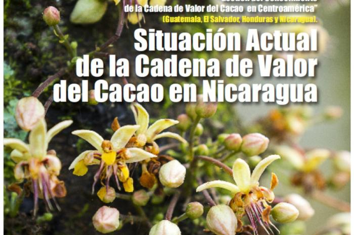 Análisis de la Cadena de Valor del Cacao en Nicaragua