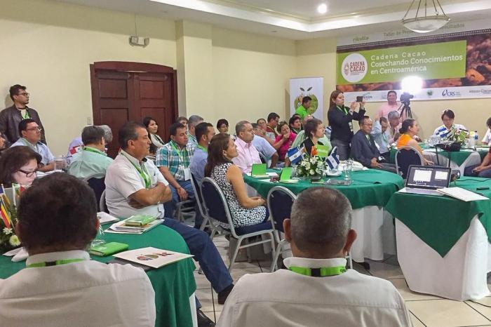 Iniciativa regional para fortalecer al sector cacao presenta 2 años de logros