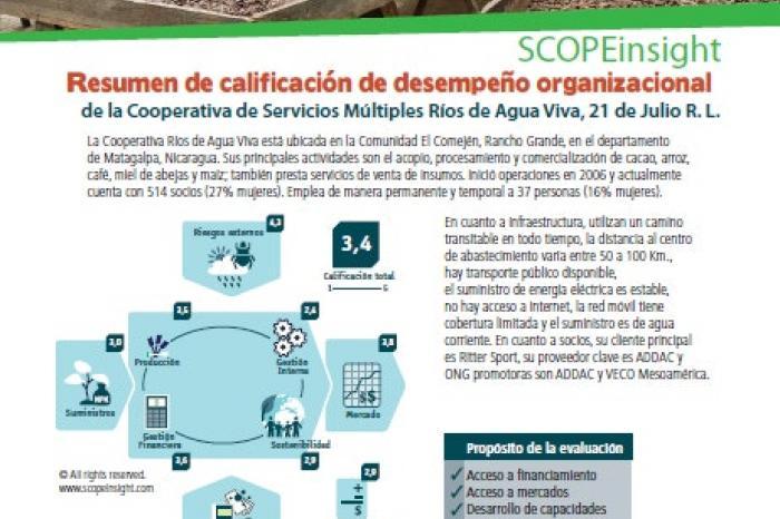 Resumen de la calificación del desempeño organizacional de la Cooperativa Ríos de Agua Viva