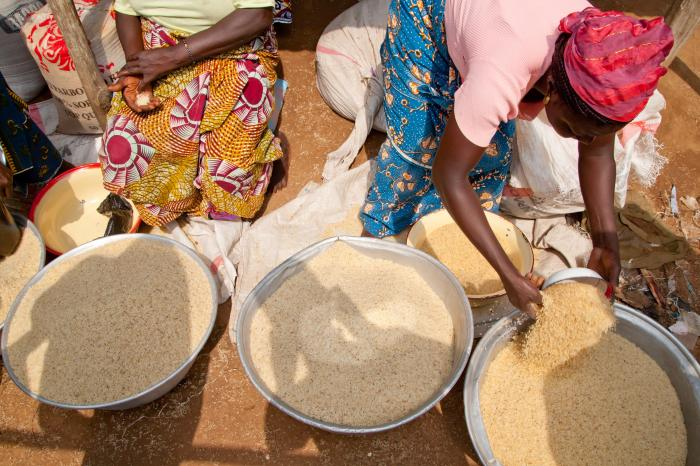 Do farmers want to produce under Fairtrade conditions?