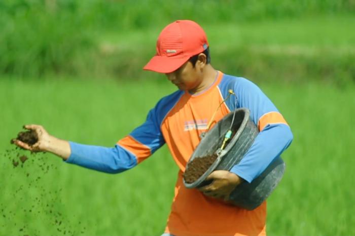 Anak Muda Bertani