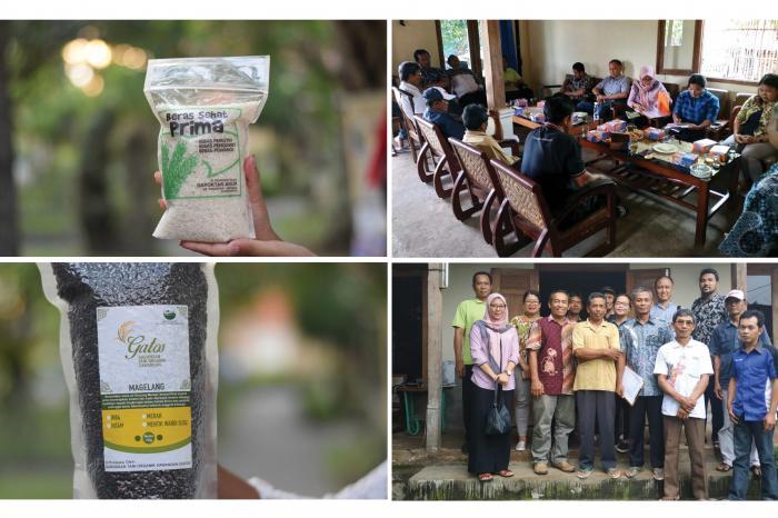 Sumber Inspirasi - Memberdayakan petani dengan beras premium