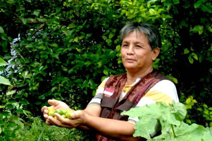 Sumber Inspirasi - Ongen: Wanatani ala Sikka
