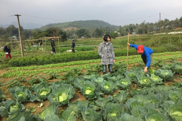 Nghiên cứu tình huống: Khi PGS gặp trở ngại: bài học để PGS tại Việt Nam cải thiện