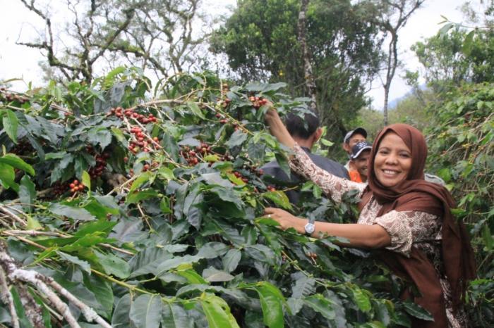 Belajar Manajemen Koperasi dari Petani Aceh
