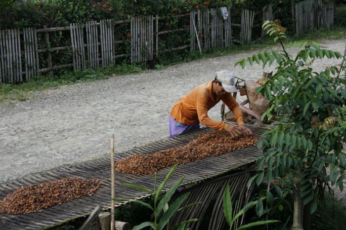 Hoe cacao mensen samen brengt