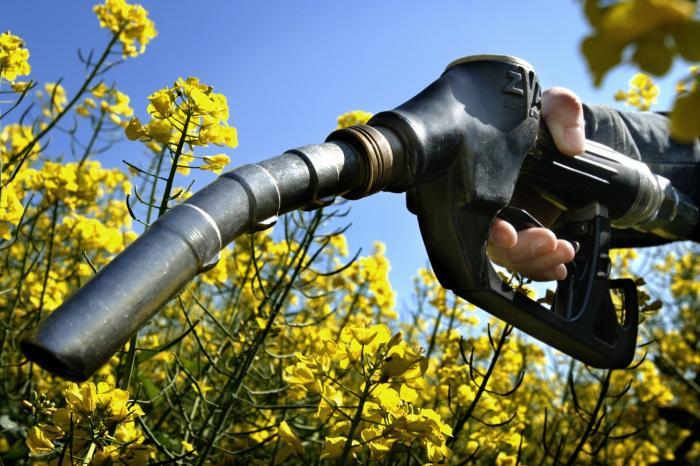 Europese biobrandstoffen verantwoordelijk voor meer honger in Afrika?