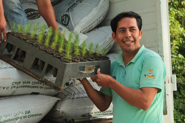 Cómo minimizar la huella de carbono en la producción de café orgánico: un estudio