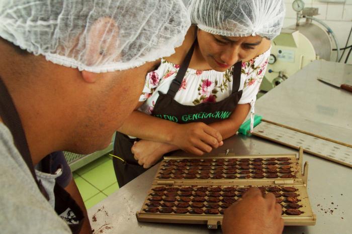 Oportunidad: Experto en Fermentación de Cacao Fino de Aroma para América Latina