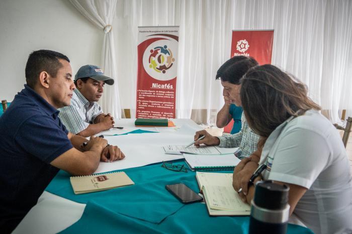 """""""Iroman"""" y el sector café de Nicaragua"""