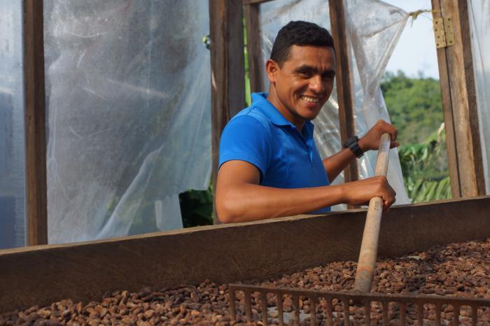 Bosque por potreros: la renovación de parcelas cambia el paisaje de Honduras