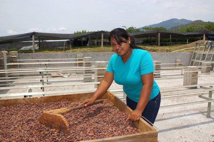 Rehabilitación del centro de acopio y secado de APROSACAO