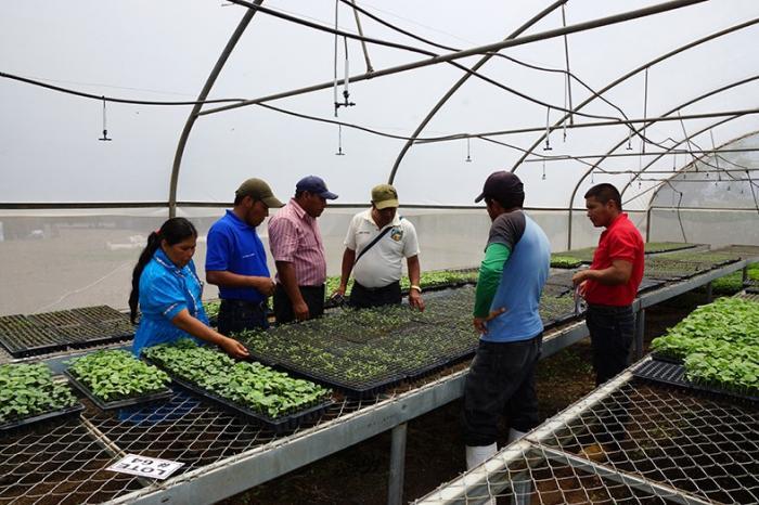 ASOFAIL de gira en nicaragua para conocer experiencias de cooperativas de hortaliceros y plataneras