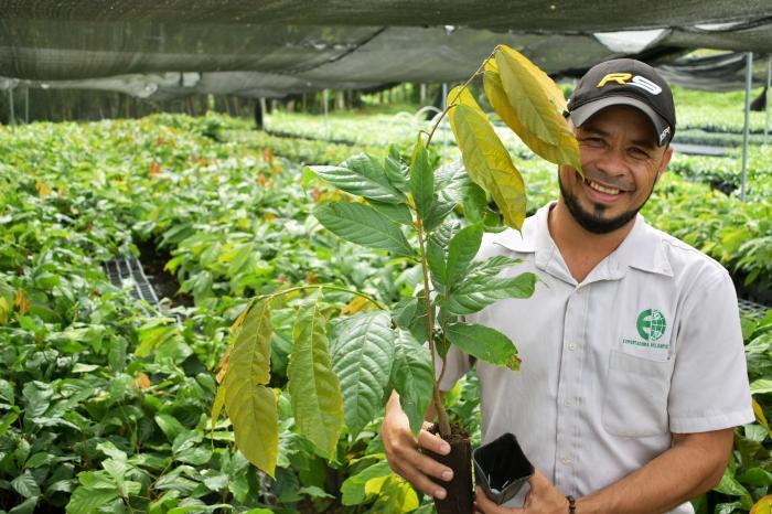 Intercambio de experiencia en material vegetativo y manejo de plantaciones