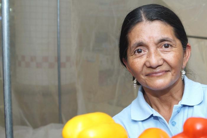 Consumidores de Managua consumirán vegetales sanos certificados
