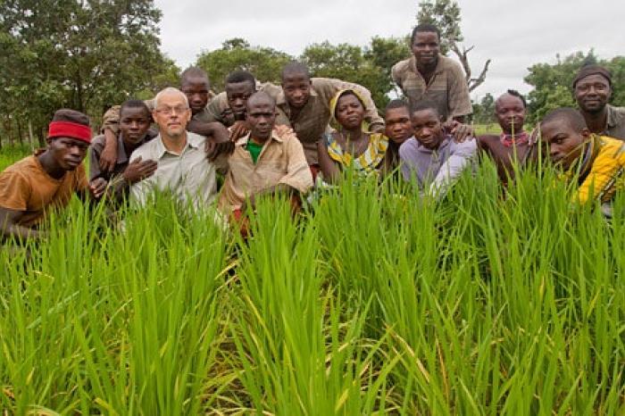 Vredeseilanden en Colruyt brengen rijst uit Benin in de rekken