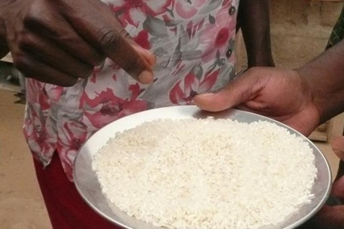 Rijst uit Benin binnenkort in Colruyt: the final countdown