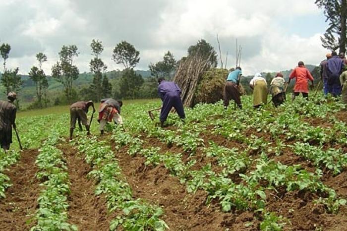 Voorzichtig positief over aangekondigde landbouwinvesteringen G8