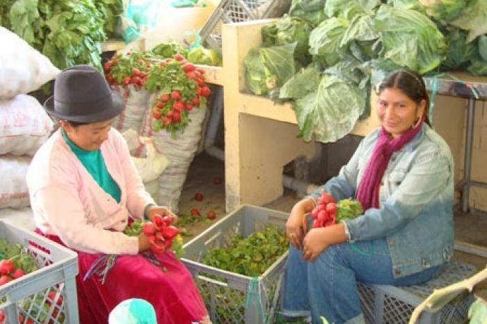 Vrouwen zorgen voor gezond voedsel in Ecuador