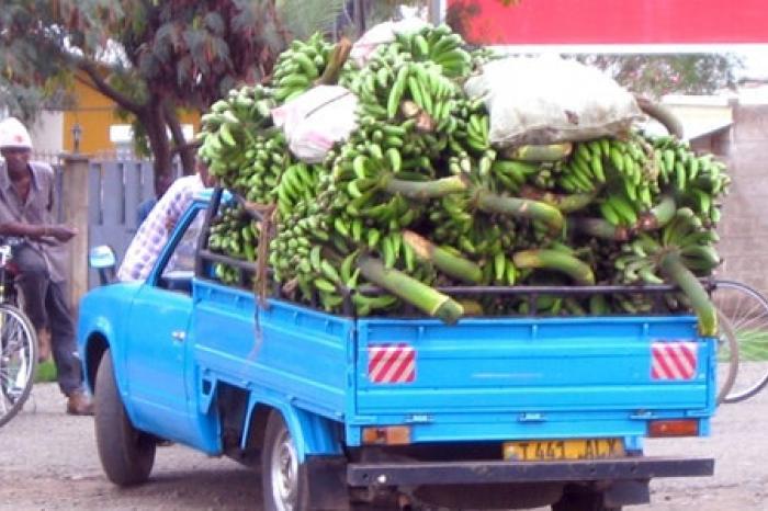 Senegalese bananenproducenten zetten handelaars op de zwarte lijst