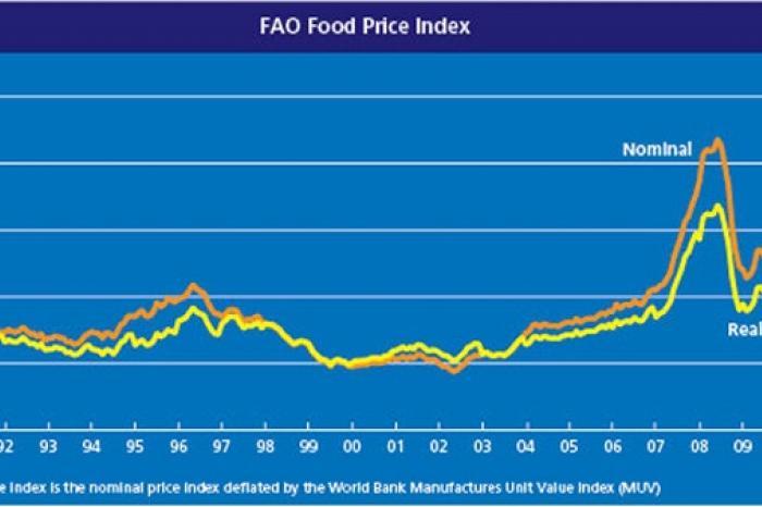 Voor wie zijn hoge voedselprijzen nu een probleem?