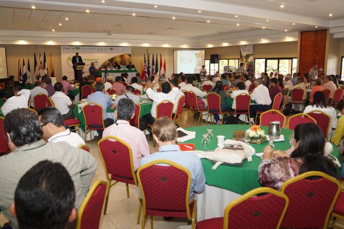 II Foro Centroamericano de Cacao dialoga sobre la excelencia con sentido regional
