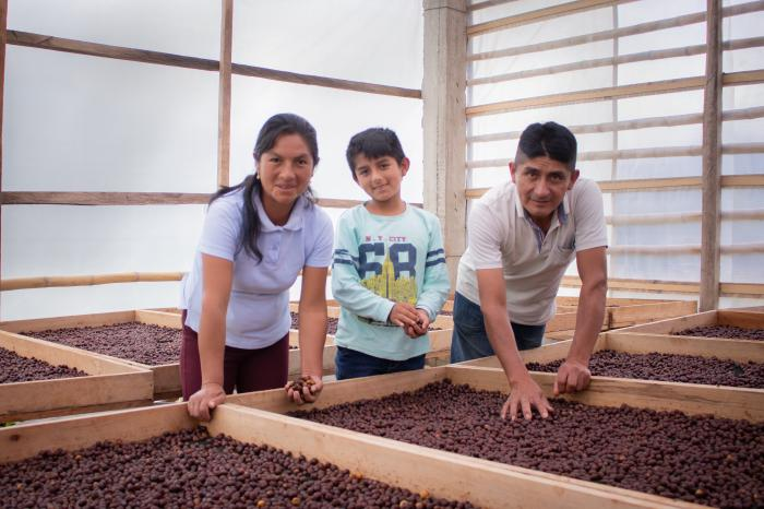 De las alianzas a las familias: avances desde la Plataforma del Café de Cajamarca